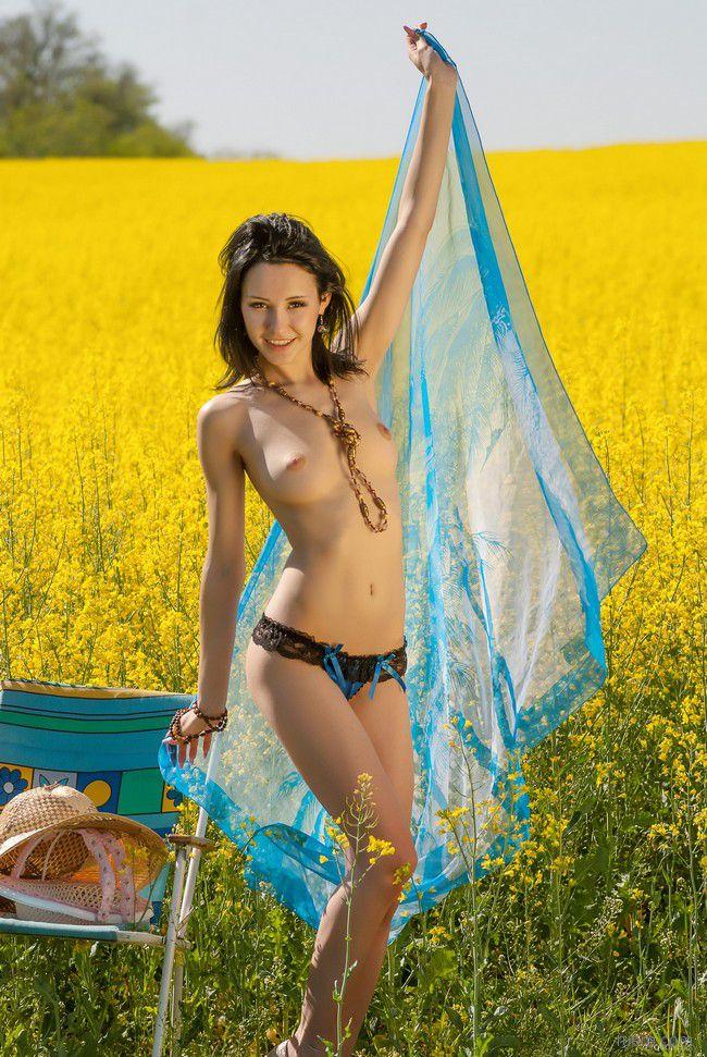 Elvira F : магия летнего поля