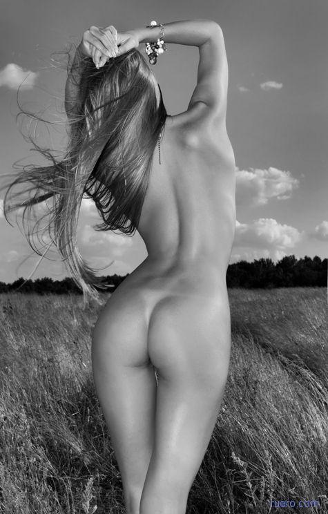 Утренний ветер полевой