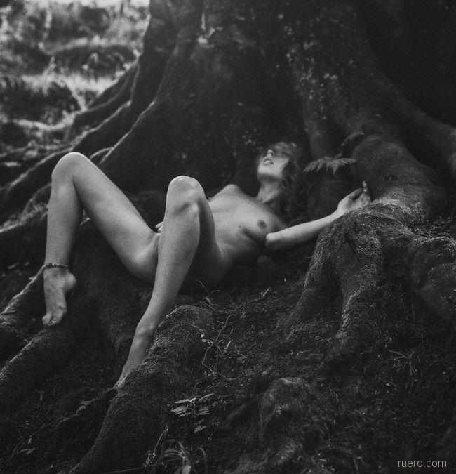 …мне нужно держаться корней…