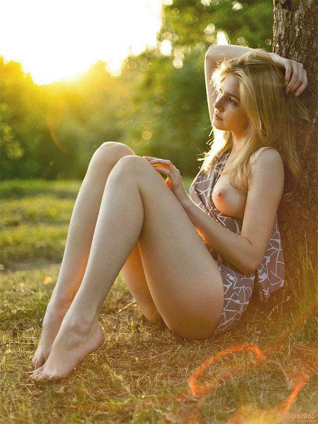 На фоне летнего заката