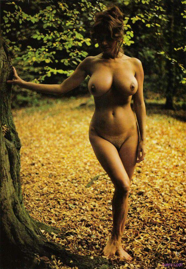 Мягкость осенней листвы