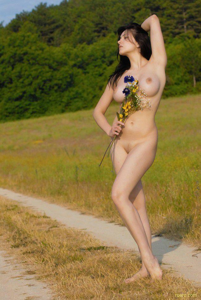 Mira : летние цветы