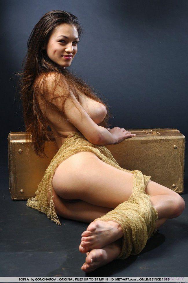 Sofia : винтаж багаж