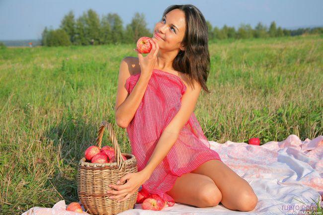 Ingrid : яблоки в поле