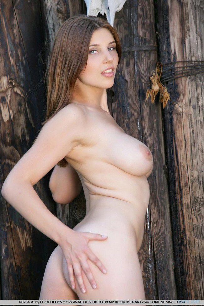 Perla : у деревянного забора
