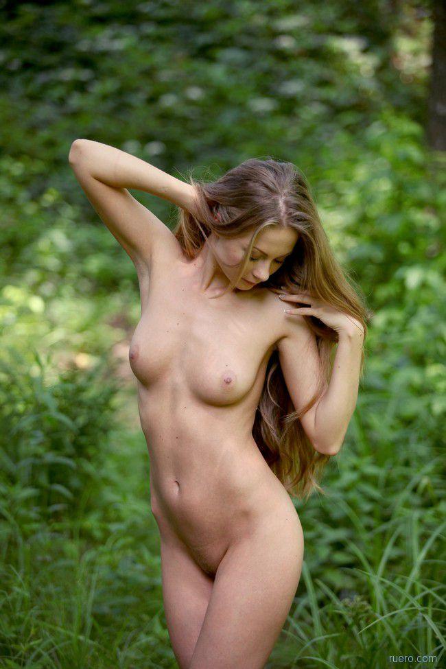 Frances : в молодом лесу