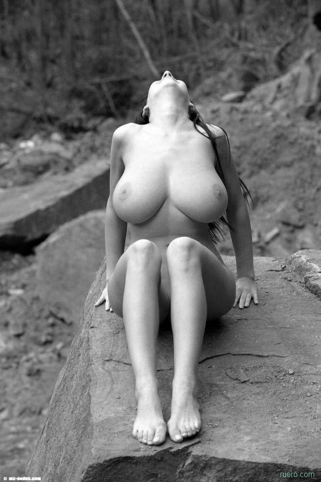 На теплом камне