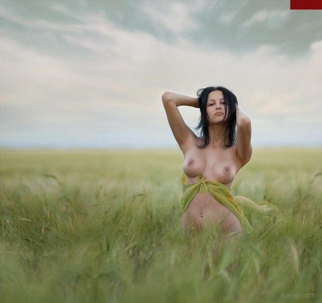 В поле зеленом