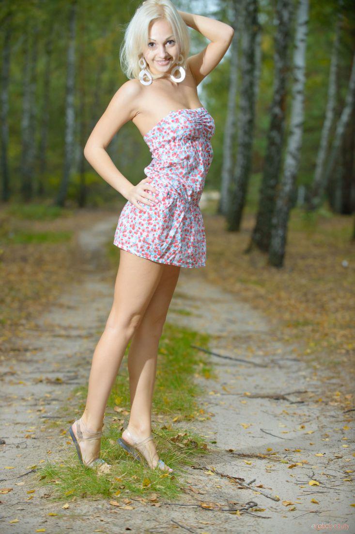 Kamlyn A : на лесных дорожках