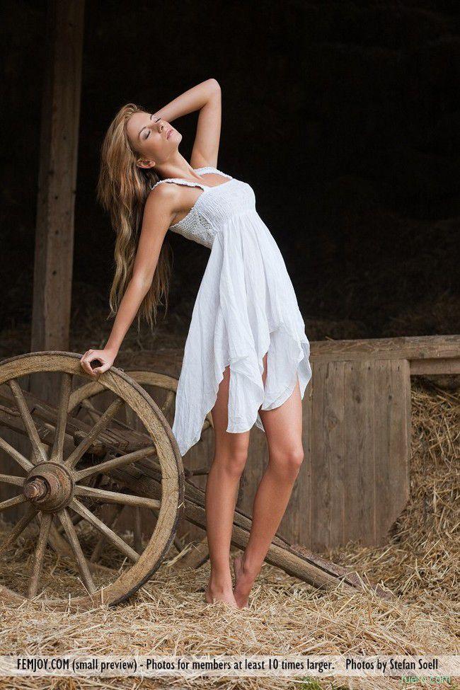 Stacey : скрип колеса