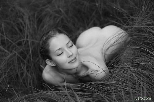 В густой траве